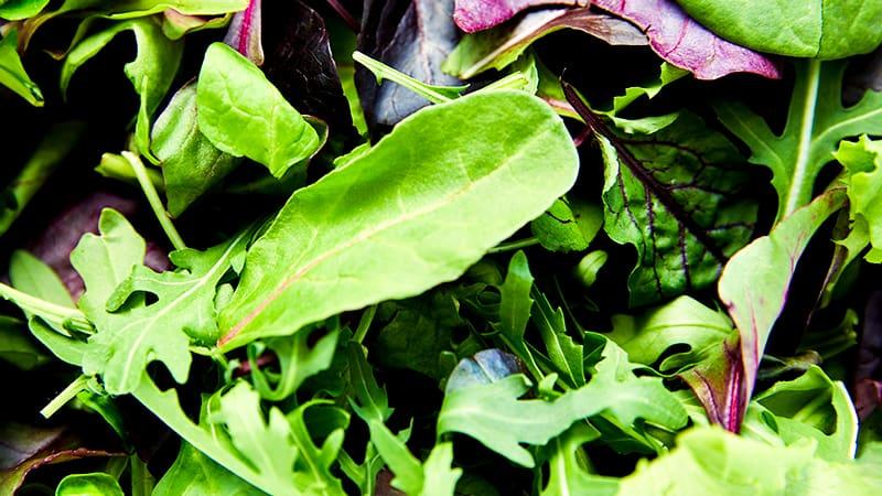 Большое разнообразие зеленых культур для продажи