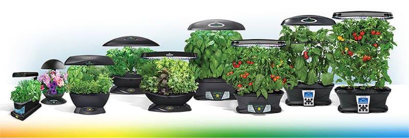 Разнообразие установок для выращивания растений методом гидропоники в квартире