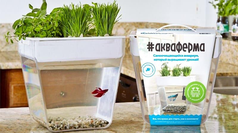 Установка на методе аквапоники AquaFarm