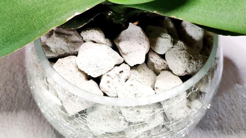 Пеностекло в качестве субстрата для выращивания растений методом гидропоники