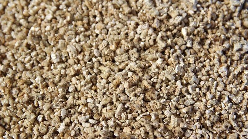 Вермикулит гигроскопичный материал способный отлично удерживать корни растений.